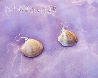 """Earrings """"Sea Shell"""""""