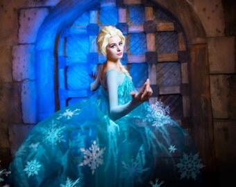 Christmas sale!!! Elsa Frozen Disney dress cosplay
