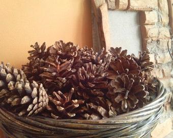 Pine cones decor pinecone wreath thuja cone christmas craft