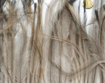 1 x Metre of Natural Emu Feather braid