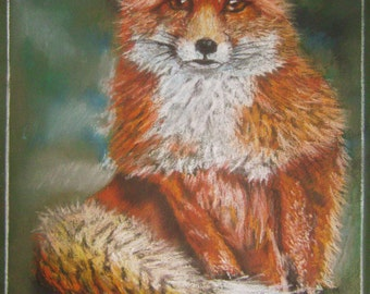 Fox pastel drawing