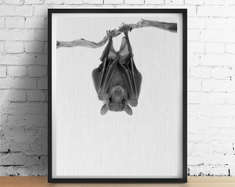 BAT Halloween Printable Art, Bat Print, Fall Autumn Wall Art, Black and White baby Animal Printables, Vampire Bat Photo Poster Download