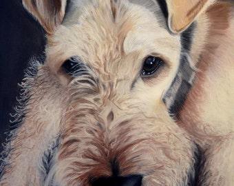 Pet Portrait hand drawn using a photo