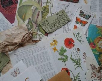 Vintage paper craft supplies~vintage ephemera~journal papers~scrapbook papers~scrapbook supplies~vintage nature pages~vintage book pages~