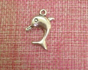 5 Dolphin charm