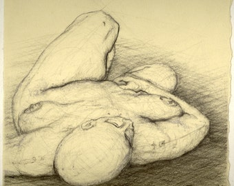 Female Figure Drawing - study