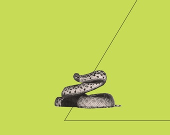 Giclee print. Lost and Found III (A). Archival giclee print made from original screenprint. Snake. Animal print.
