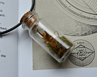 Magic Forest Necklace Vial