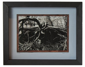 Roots (Nature Series) - Print 1