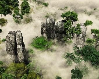 Tianzi Mountains - Foggy Morning