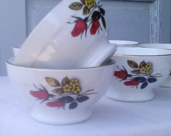 French retro porcelain bowls, set of six 1950 rose pattern.