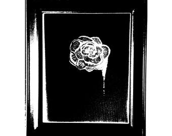 OzShamm Flowers