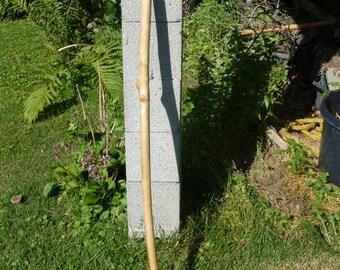 "Handmade red maple walking stick 51"""