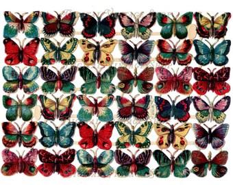 Victorian Vintage Die Cut Scraps of Butterflies Digital Download