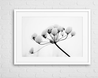 Winter Berries Art Photo With Frame