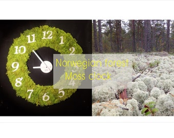 norwegian forest moss clock