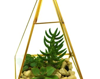 DIY Terrarium Kit, Succulent Prism Geometric , Miniature Garden, Glass and Brass Terrarium, Living Succulent, Green Garden