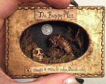 The Buggy Man Miniature Diorama Rogue Taxidermy Art