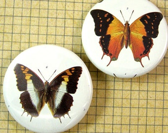 Butterfly Pinback Buttons
