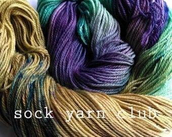 Sock Yarn Club - 6 month subscription