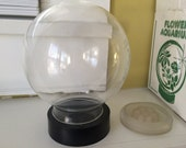 Glass Globe Flower Aquarium / Instructions / New in Box Cloche / Terrarium