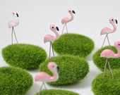 Tiny Flamingo Lawn
