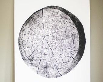 Tree Stump Tree Rings Large Screen Print 18 x 24