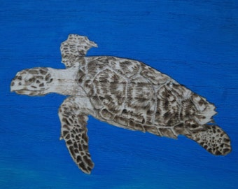 Sea turtle Pyrography Box Hand Burned and Painted 7.25 x 7.25 inches by Pigatopia