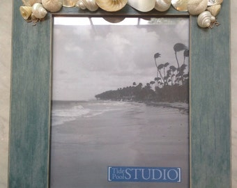 8x10 Sliced Nautilus Shell Picture Frame