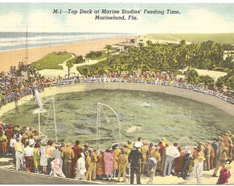 Marine Studios Marineland, FL Vintage 20's - 40's Linen Postcard
