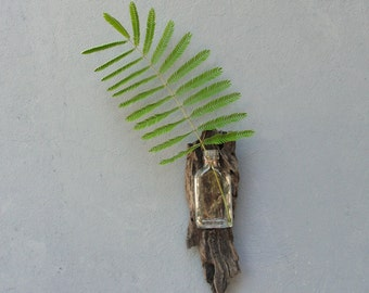 Driftwood Vase, Planter Wall Hanging, Vintage Bottle Vase - Beach Home Decor