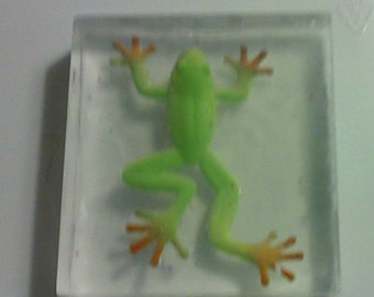 Tree Frog Soap   2.5 once soap with a vinyl tree frog inside   frog party favor