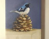 Bird Pinecone painting original still life blue warbler An Autumn Song