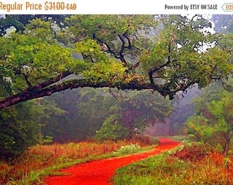 On Sale Painted Photograph, 7x5 fine art giclee print, Title: Follow the red brick road