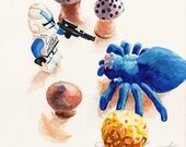 Dang BIG Spider Stormtrooper Star Wars lego ORIGINAL watercolor painting by Redstreake