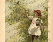 ON SALE Jessie trying to Catch a Robin, bird, cage, image Scan, instant Download, late 1800's, DB032