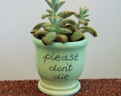Ceramic Succulent Planter - Gag Gift - Please Don't Die Pottery Plant Pot with Drainage Tray in Mint Green Windowsill Planter