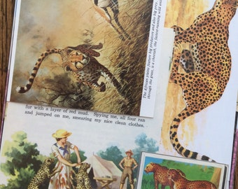C is for Cheetah Vintage African Safari Animal Collage, Scrapbook and Planner Kit Number 1906