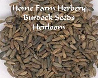 Burdock Heirloom seeds. Great medicinal & culinary plant, Order Now