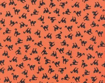 Spooky Delights, Scaredy Cats Pumpkin (2902 11)