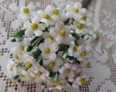 Czech Republic Velvet Forget Me Nots Millinery Fabric Flowers Ivory