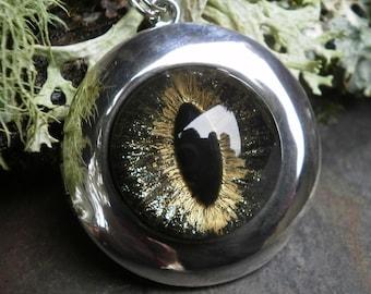 Gothic Steampunk Galaxy Eye 2 way Photo Locket
