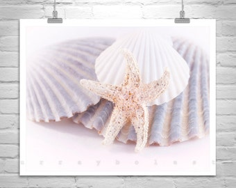 Picture for Bath, Starfish Art, Aqua Art, Blue Seashell Art, Starfish Picture, Wall Decor, Seashell Decor, Shell Photograph, Bath Art