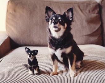 Felted Dog Custom Pet sculpture pet portrait original made from your photos