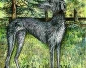 Deerhound ORIGINAL painting