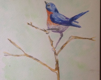 Bluebird,original watercolor painting 9x12