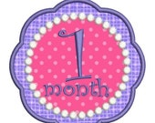 SALE 65% off Applique Baby Girl Months Monthly Bodysuit Age Numbers Fonts Machine Embroidery Designs 4x4 and 5x7