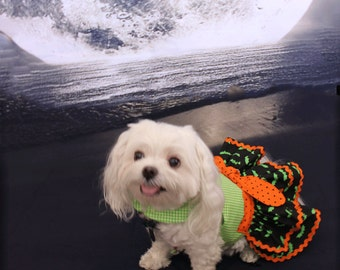 Dog Costume Halloween costume for Small Dog Halloween party