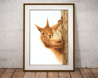 Red Squirrel Saying Hello - Watercolour Art Print (8 x 12 inches)