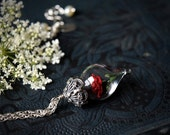 Classic Red Rose Flower Terrarium Glass Vial Necklace (Beauty and the Beast Enchanted Rose) by Woodland Belle